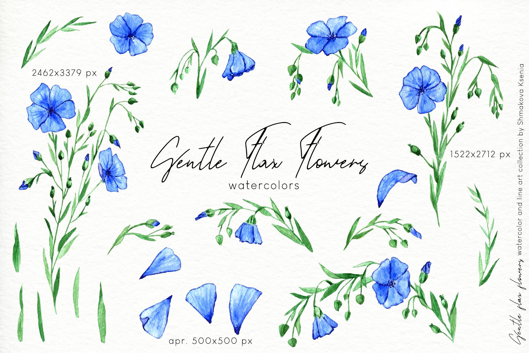 Gentle Flax Flowers example image 7