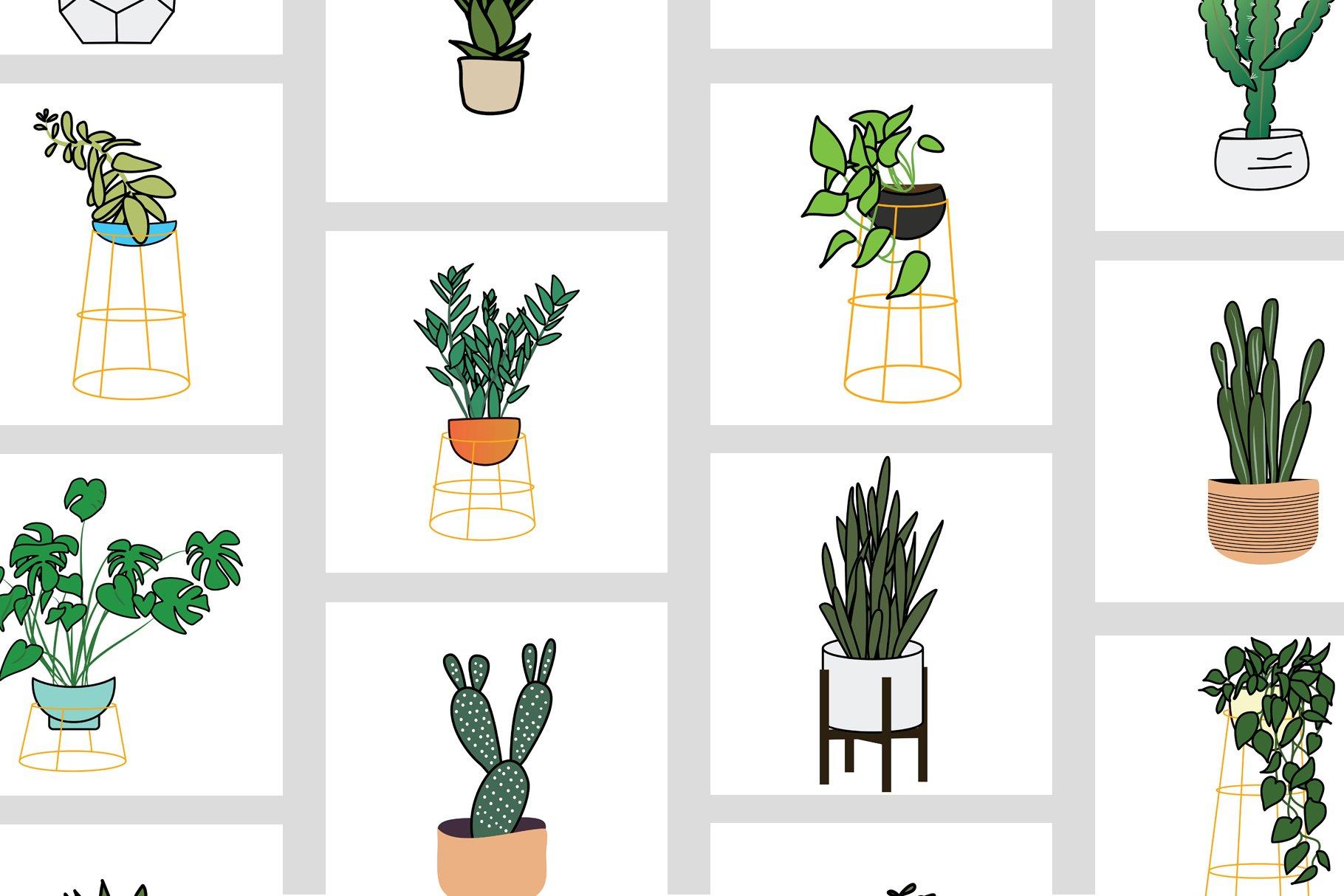 Houseplants Bundle example image 5