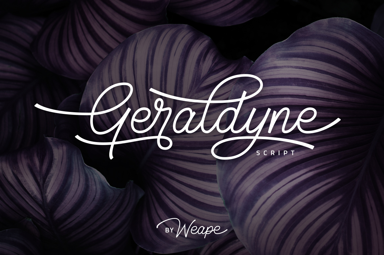 Geraldyne Script example image 1