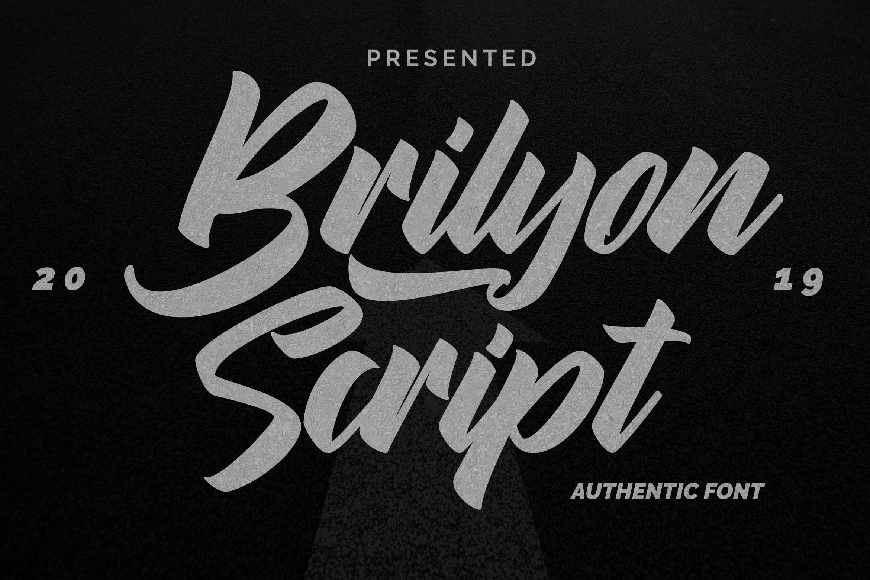 Brylion Script   Unique Authentic Font example image 1