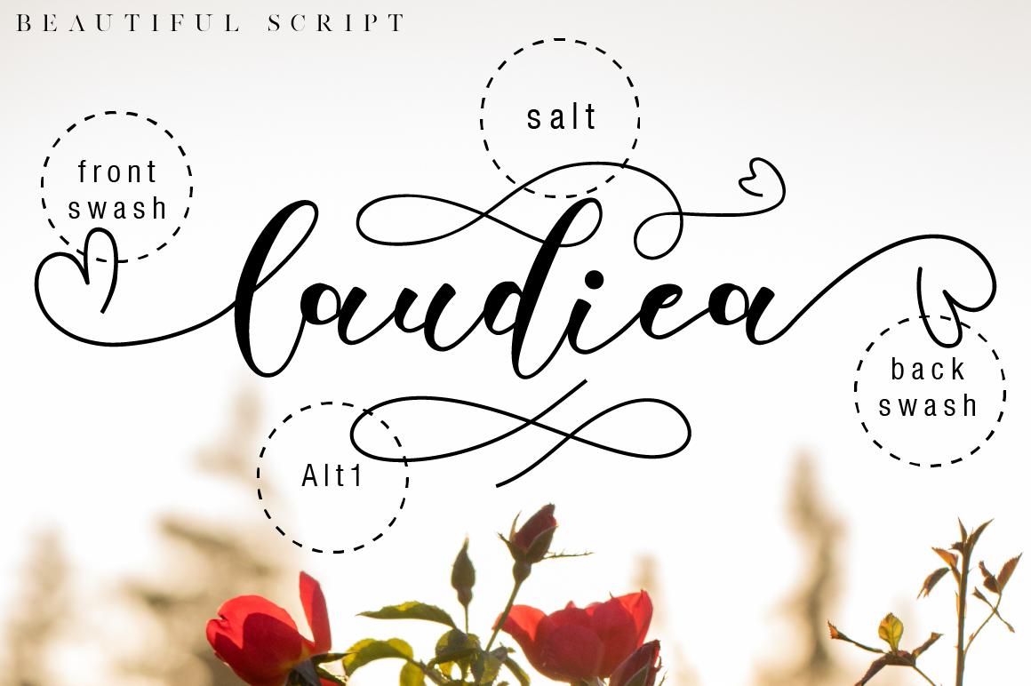 Laudiea Script example image 6