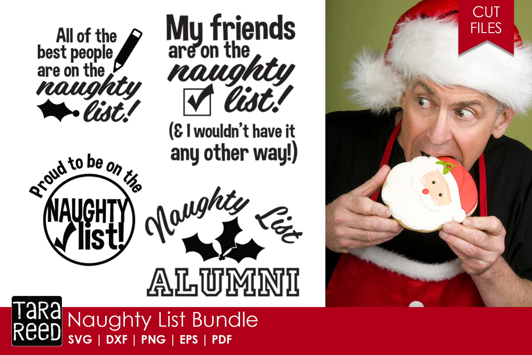 Christmas Humor MEGA Bundle - SVG and Cut Files for Crafters example image 3
