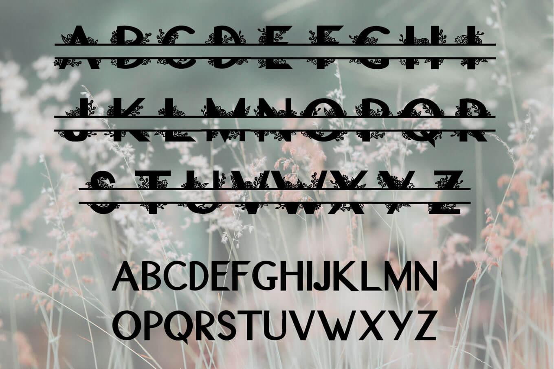 Floral Split Font - A Monogram Font example image 3