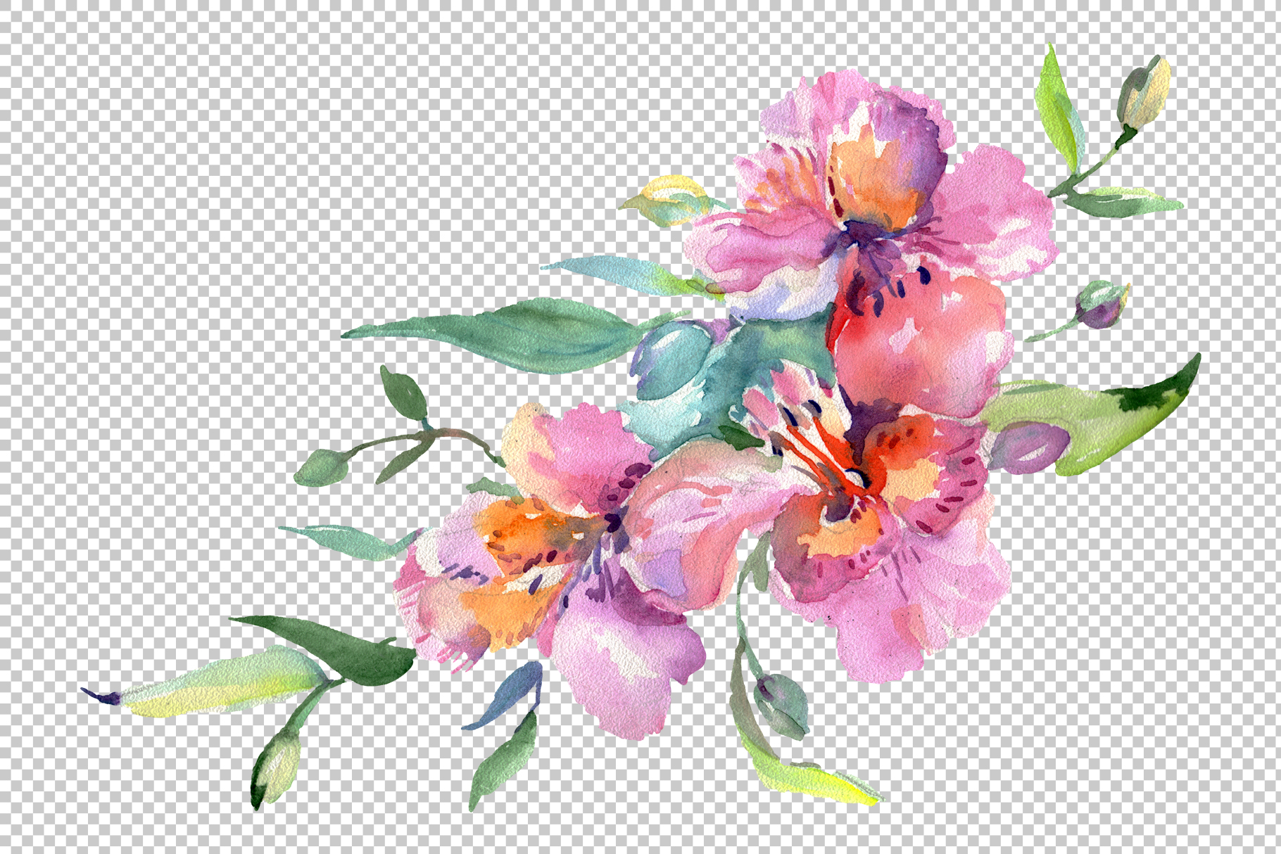 Bouquet of flowers matures feelings watercolor png example image 4