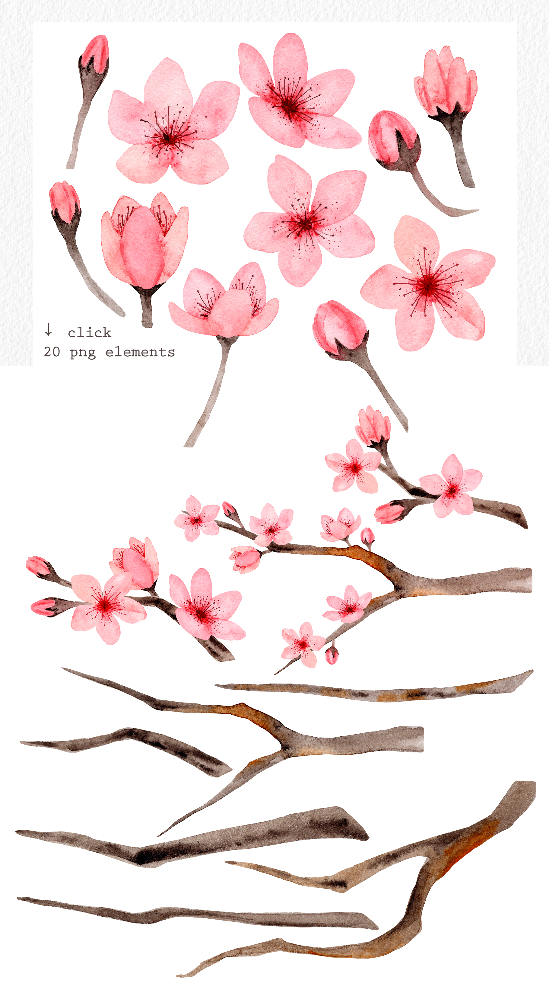 Watercolor Cherry Blossom. Patterns example image 2