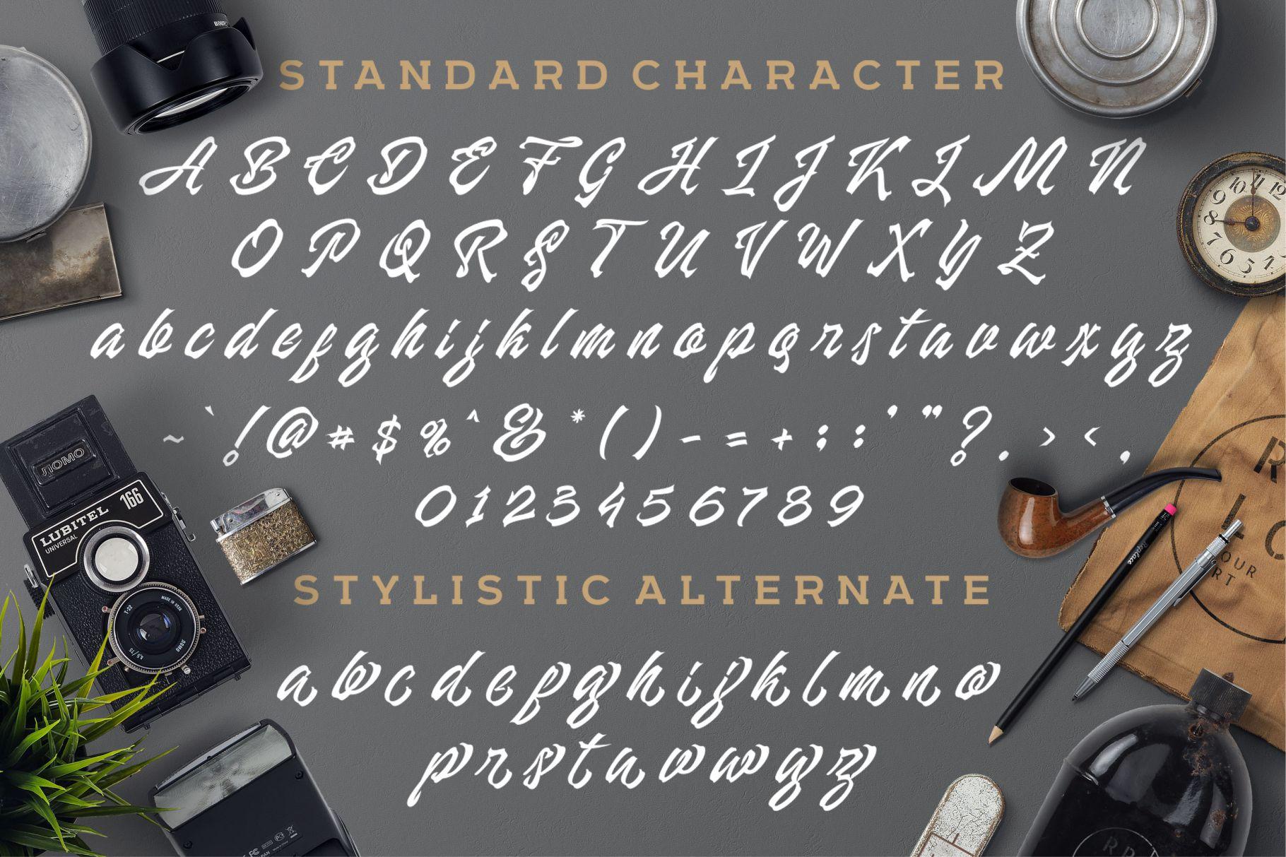 Manhattan Brush - Ink Script Font example image 3