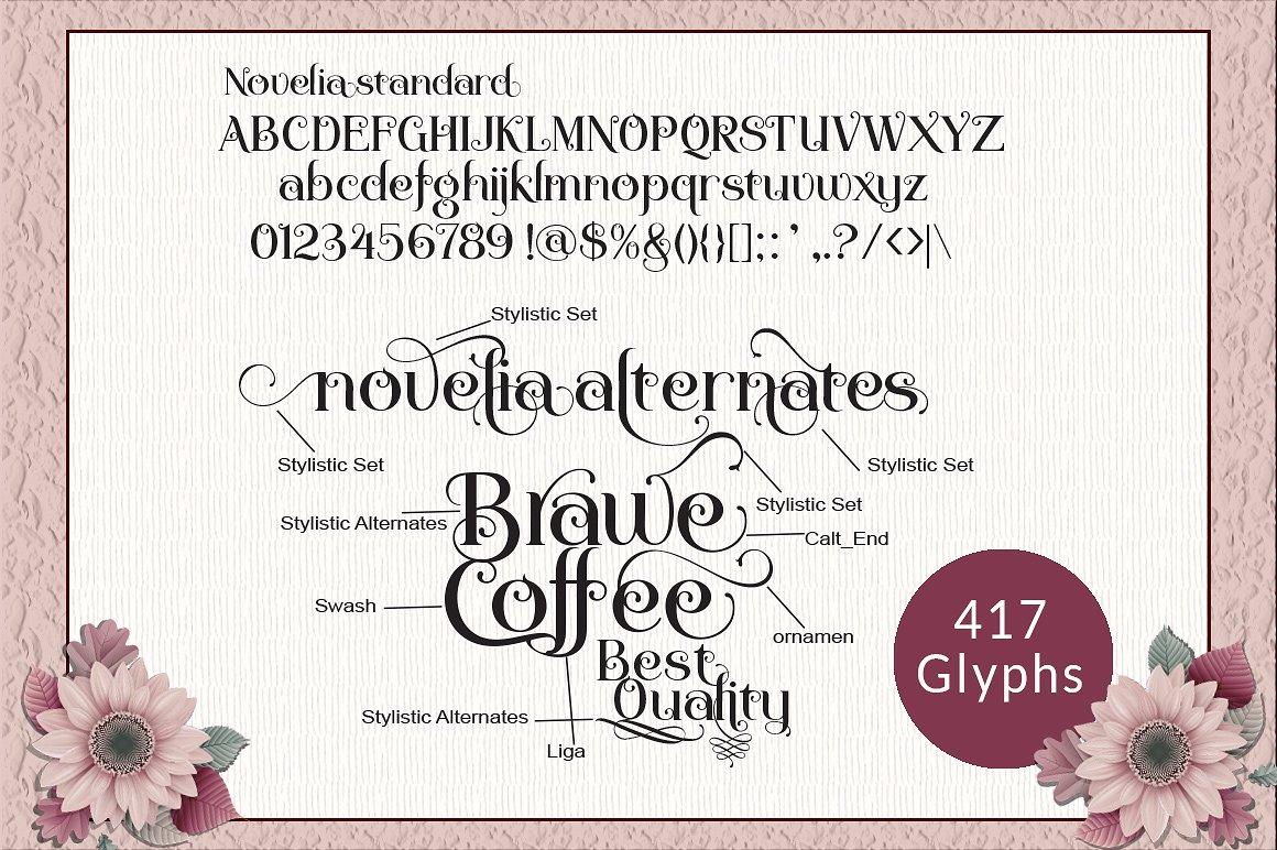 Novelia Typeface example image 5