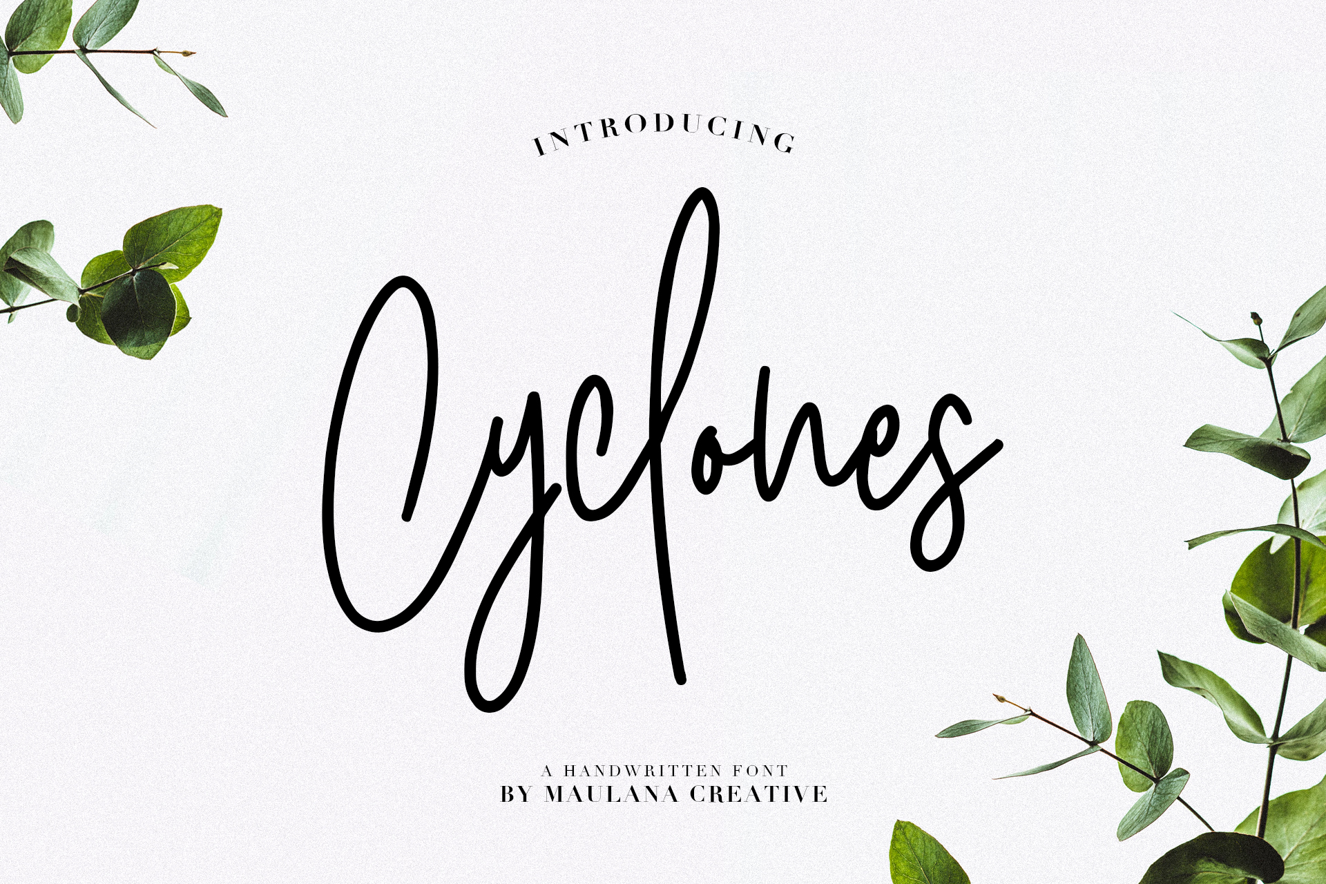 Cyclones Signature Brush Font example image 1