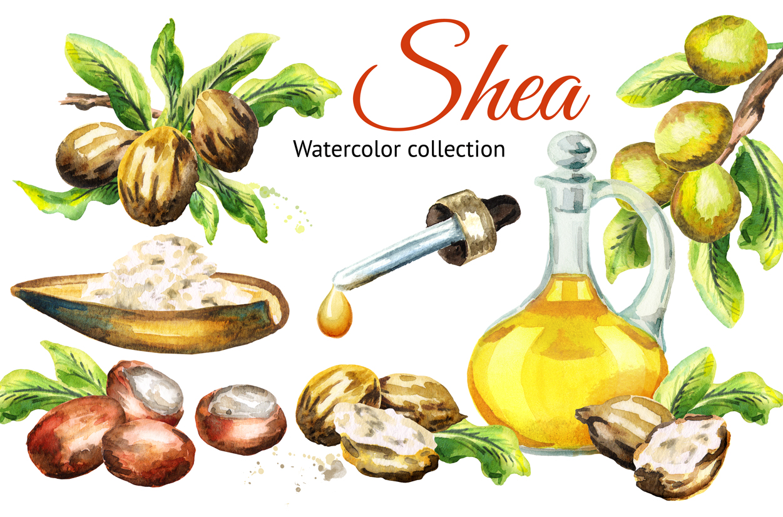 Shea example image 1
