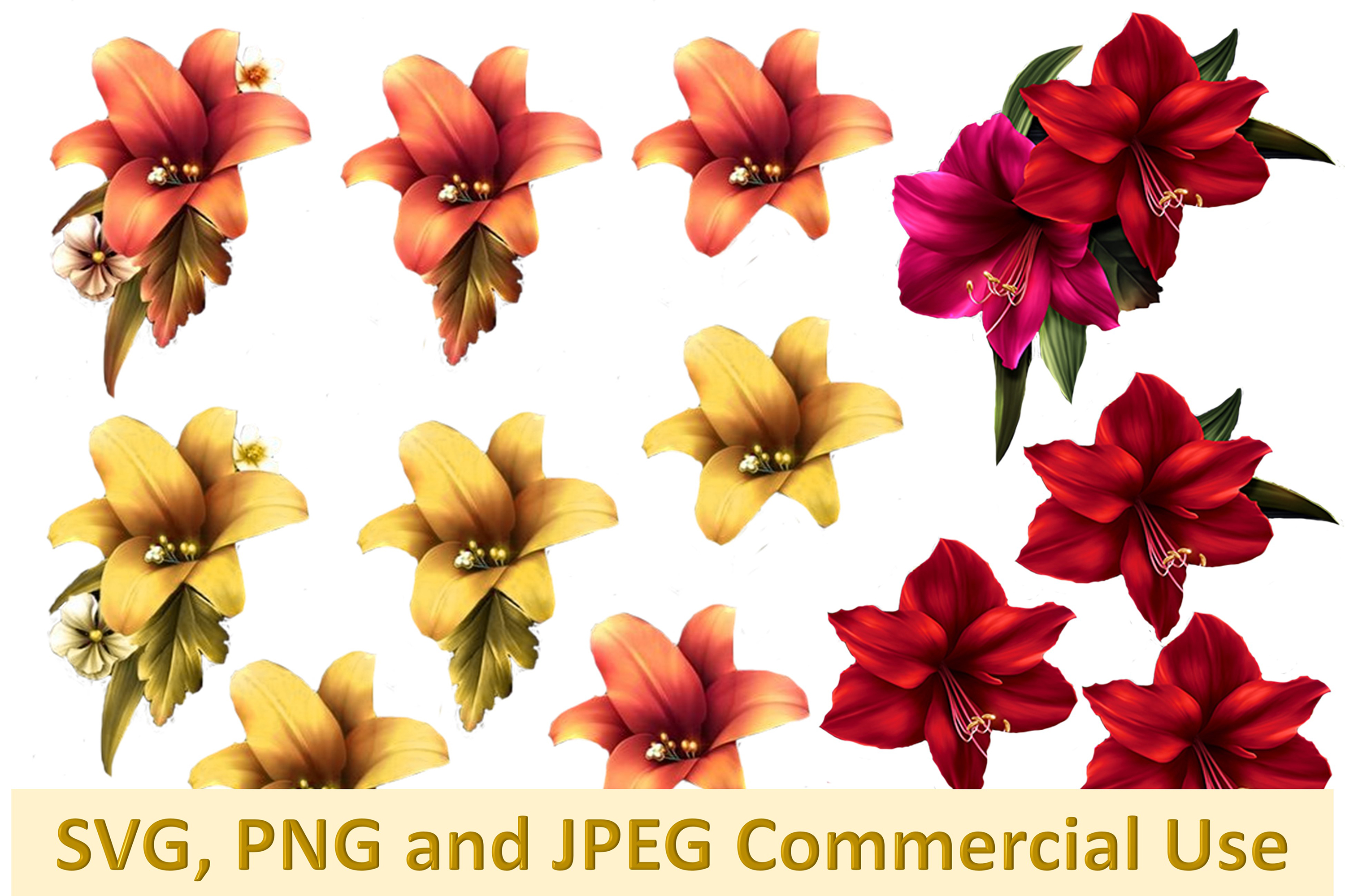 SVG, PNG and JPEG Autumn Lilies Collage Commercial Use example image 1