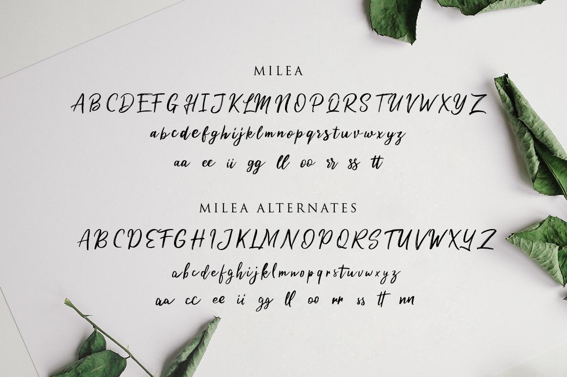 Milea - Hand Brush Script example image 6