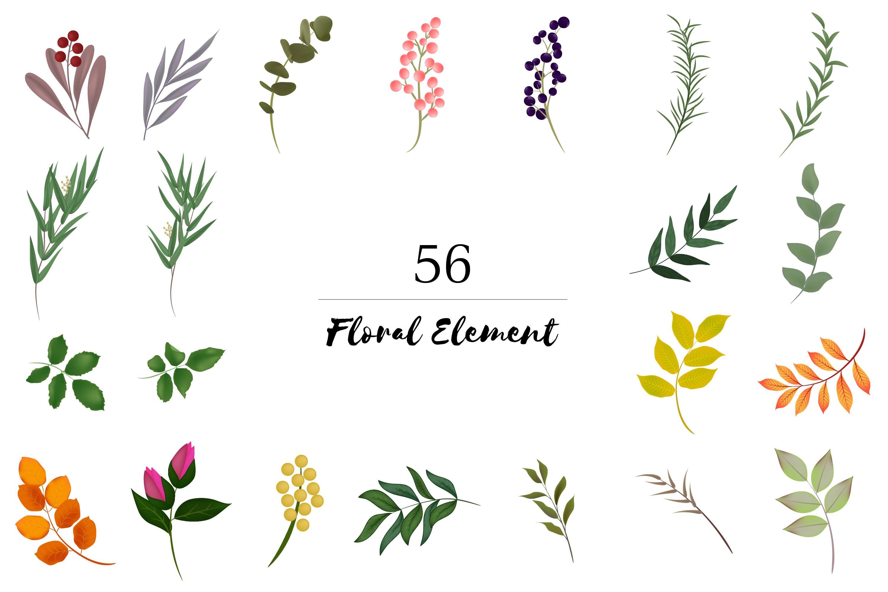 150 Flower and Floral Vector Illustration Element example image 5