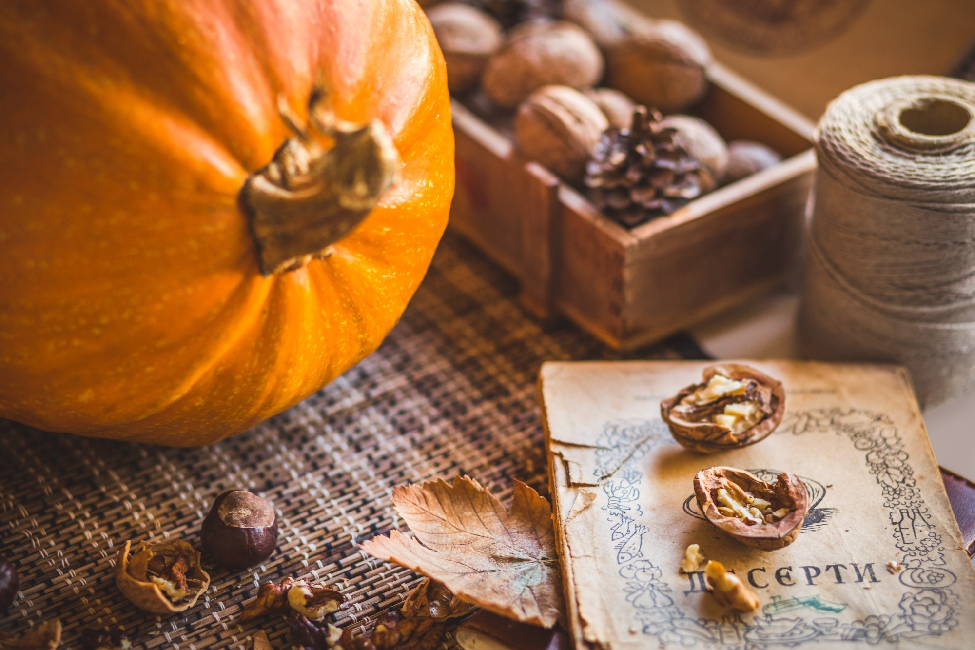 Pumpkin and Nuts  example image 1