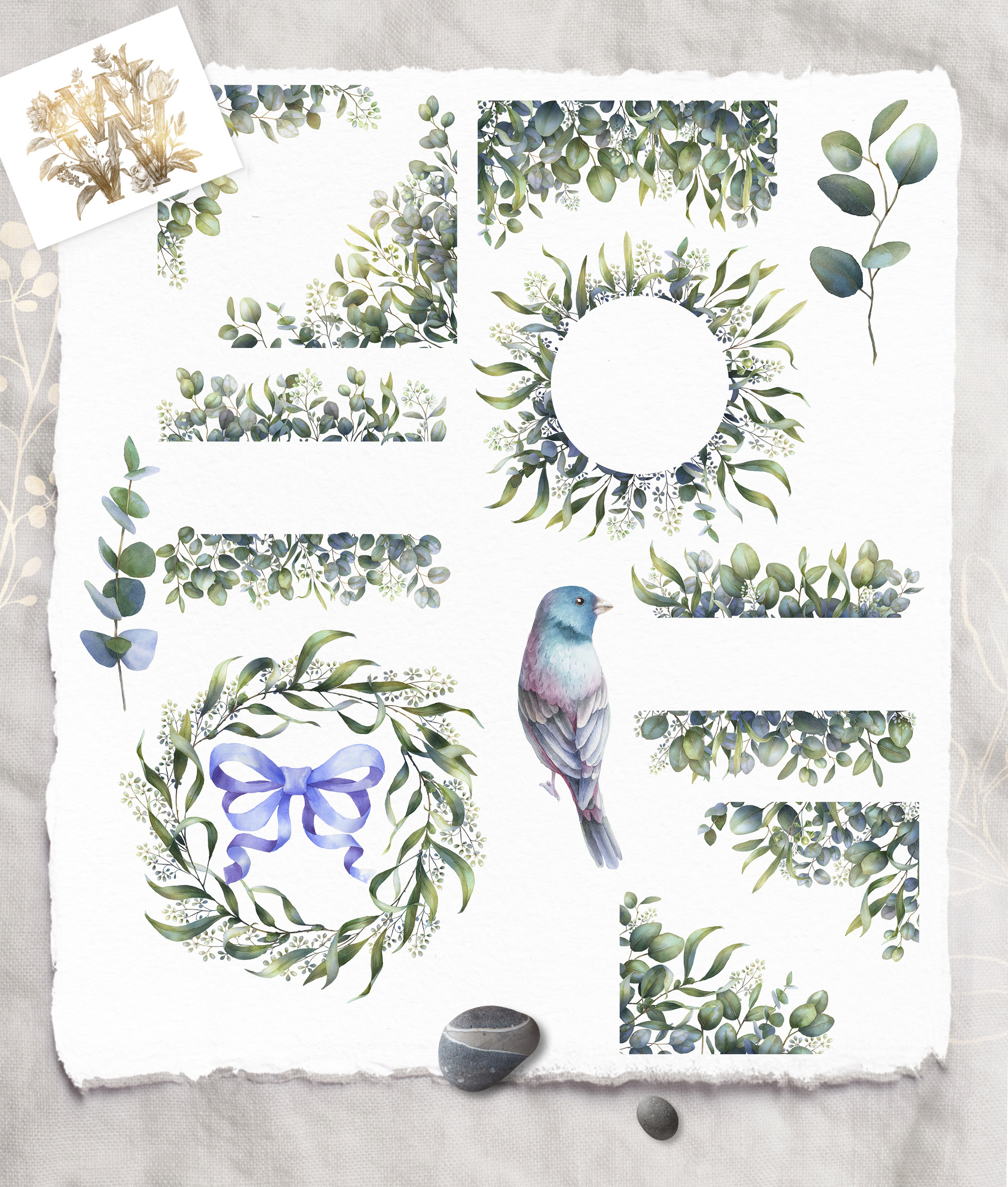 Watercolor Eucalyptus greenery collection clip art example image 2