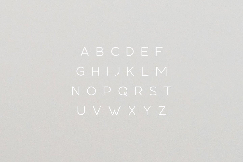 Tundra Typeface example image 2