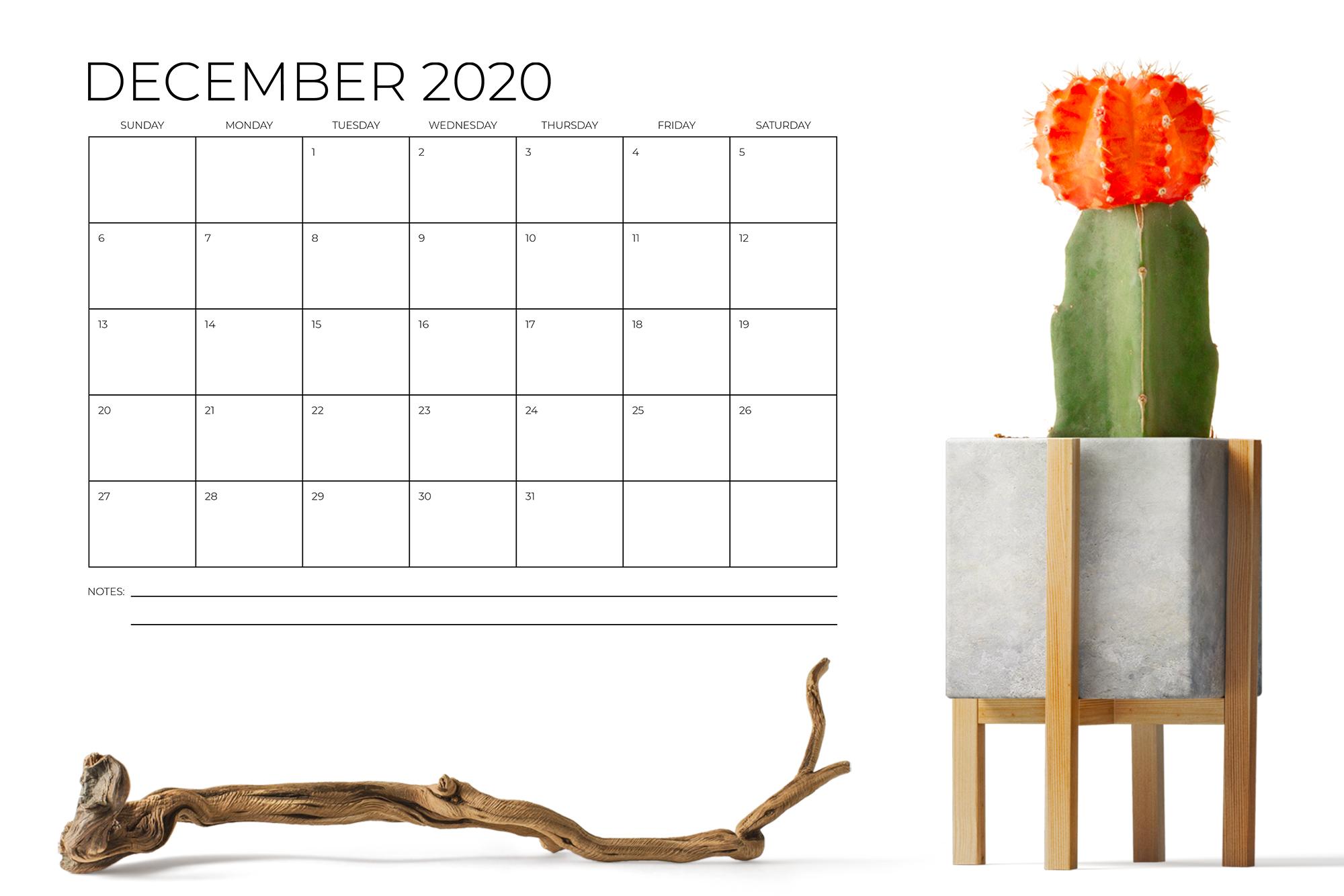 8.5 x 11 Inch Minimal 2020 Calendar example image 6