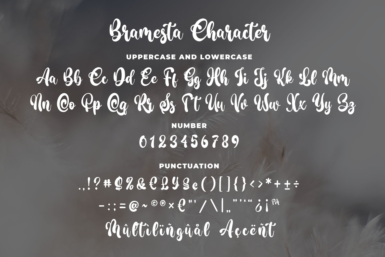 Bramesta - Modern Bold Script example image 4