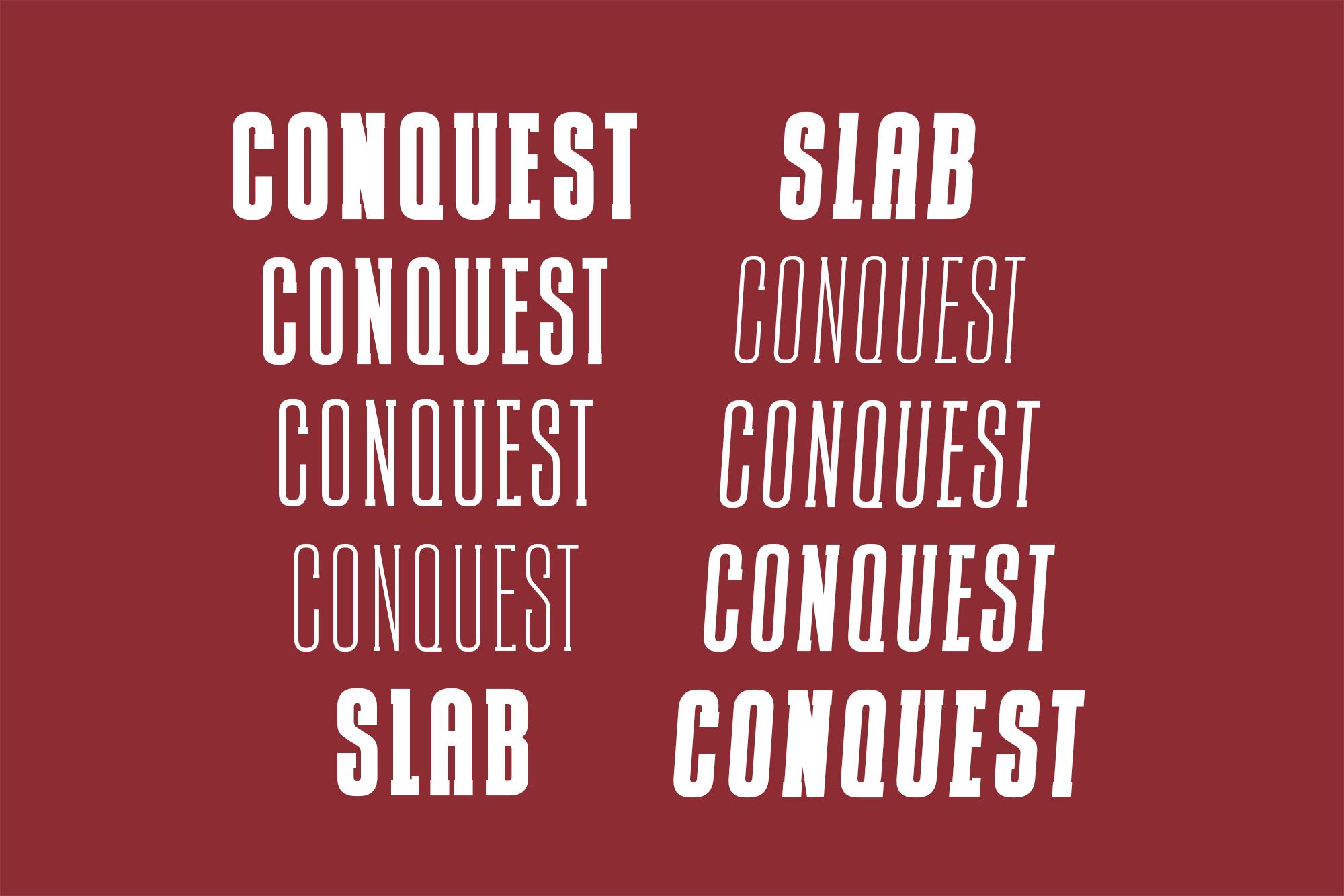 CONQUEST Sans & Slab Serif example image 4