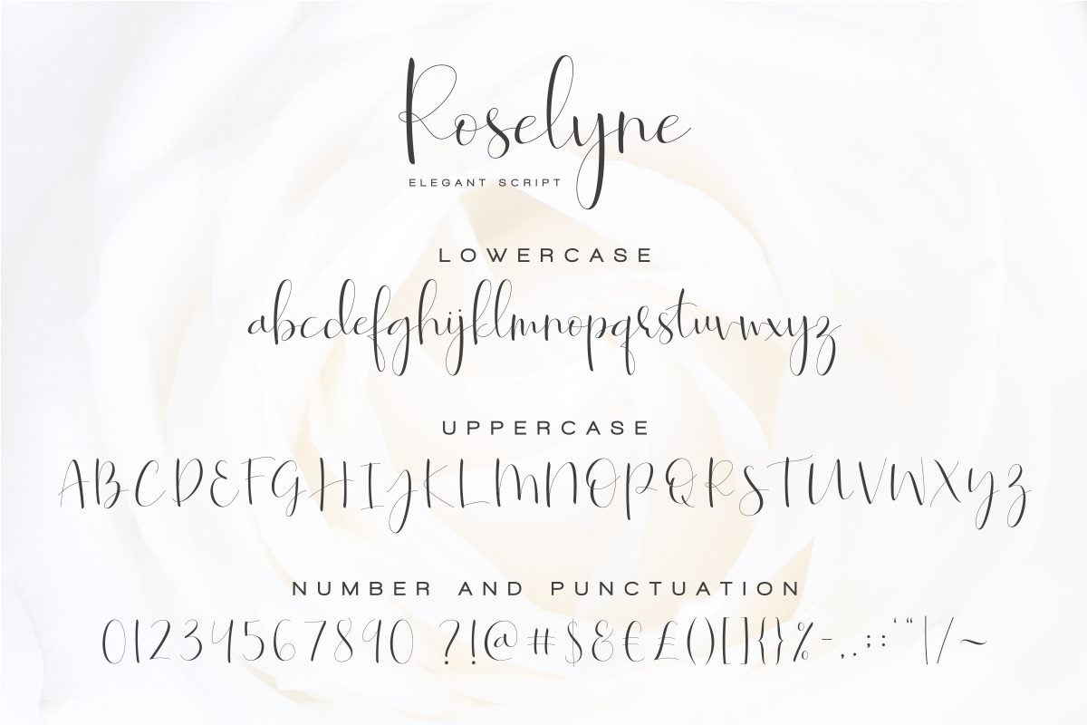 Roselyne Calligraphy Script Font example image 8