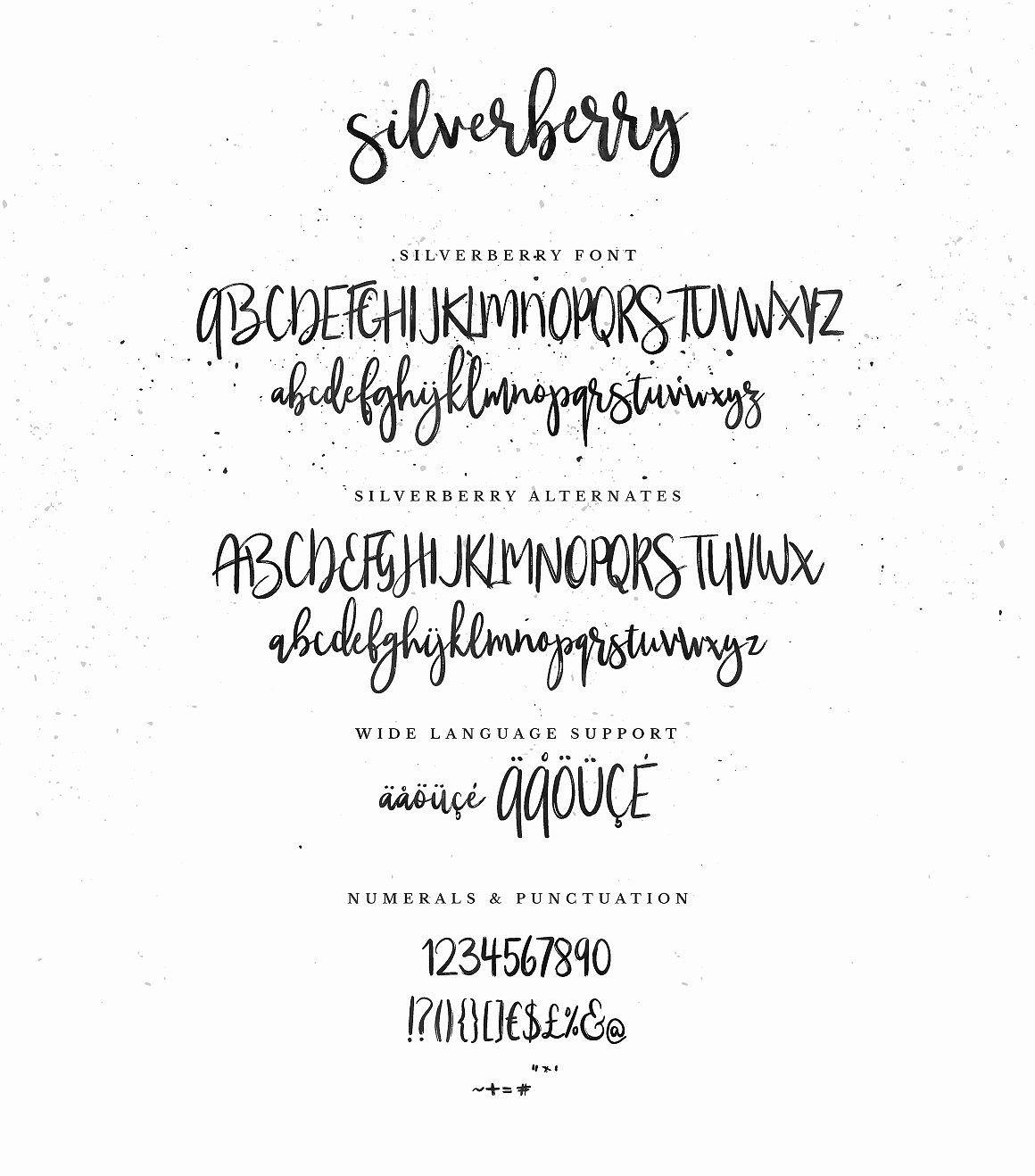 Silverberry - Dry Ink Font example image 7