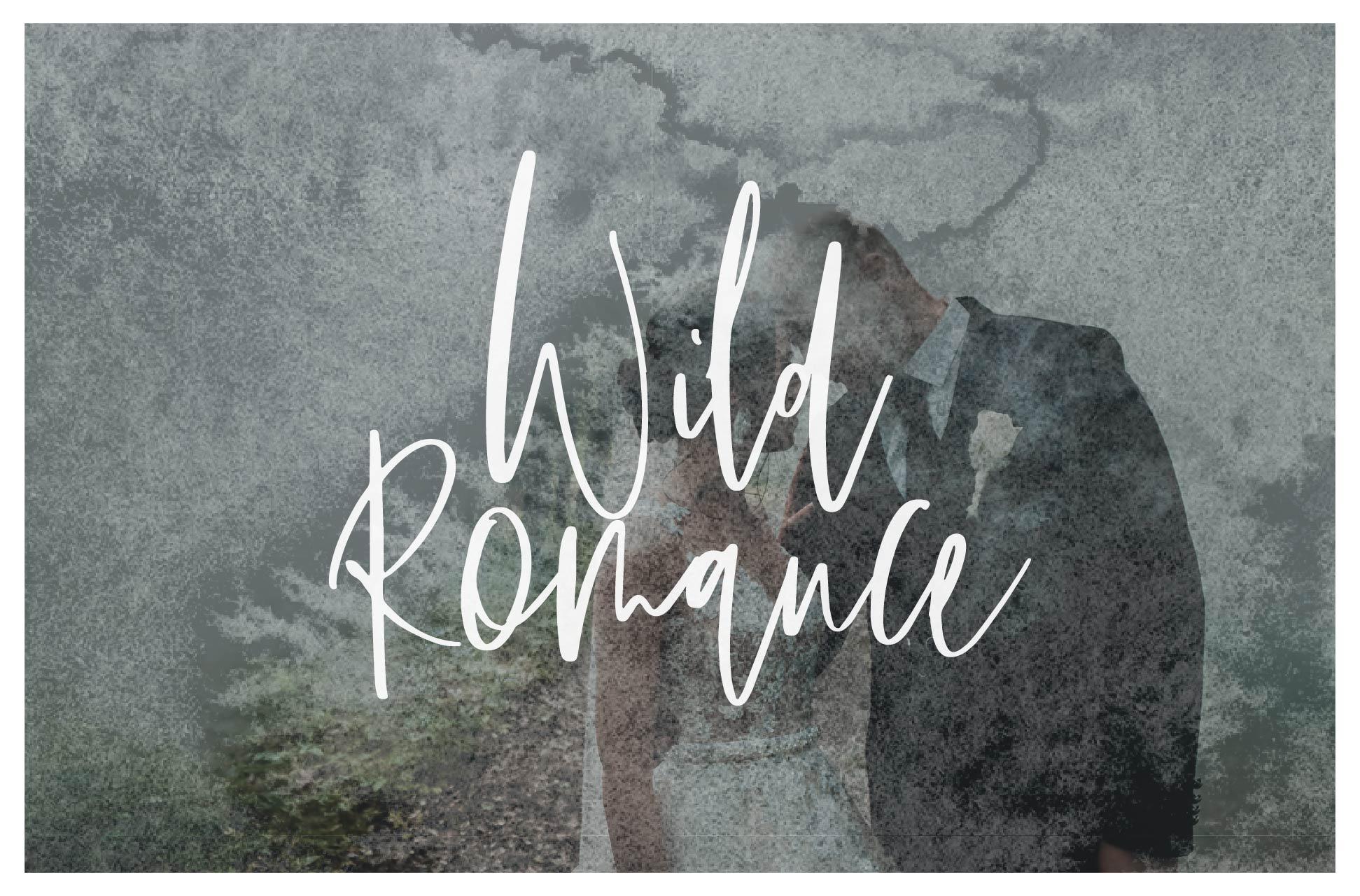 Wild Romance Script Font example image 1