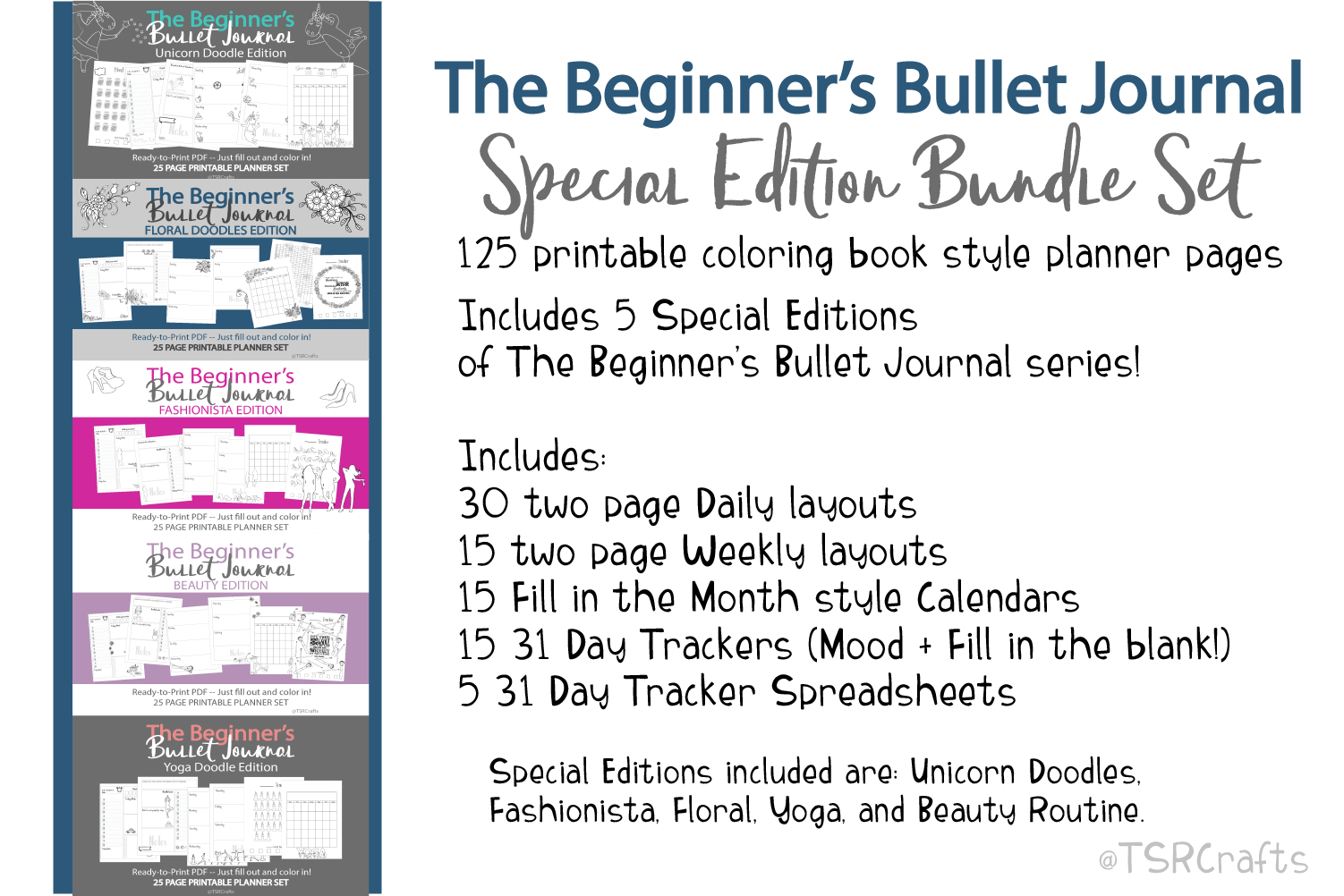 Beginner's Bullet Journal Printables Special Edition Bundle example image 2