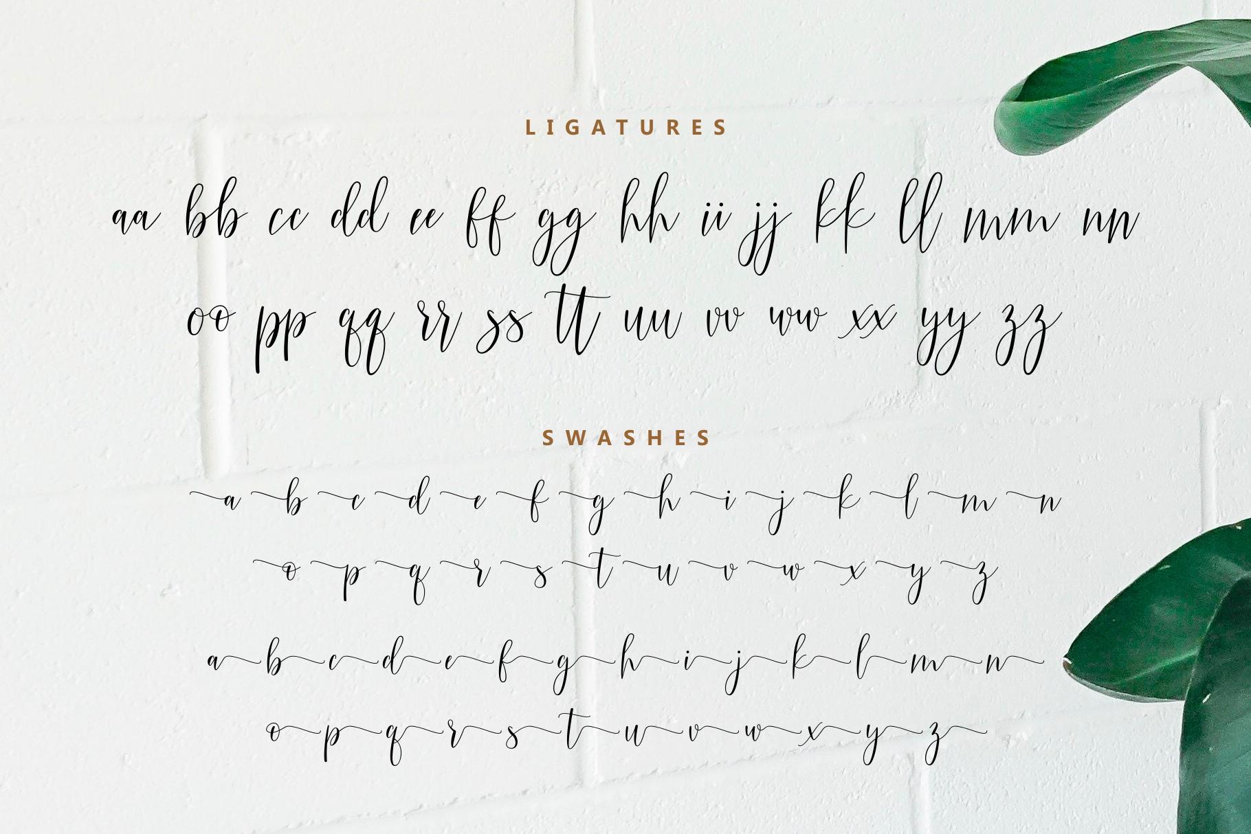 Claudia Modern Script example image 9