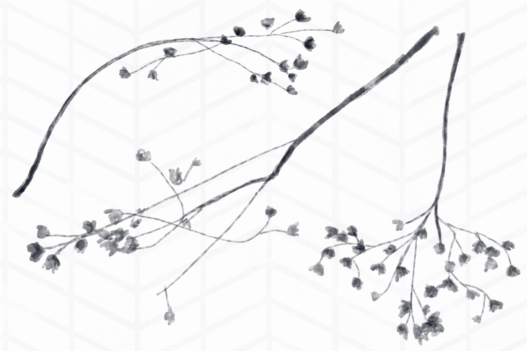 8 Pressed Flowers example image 2