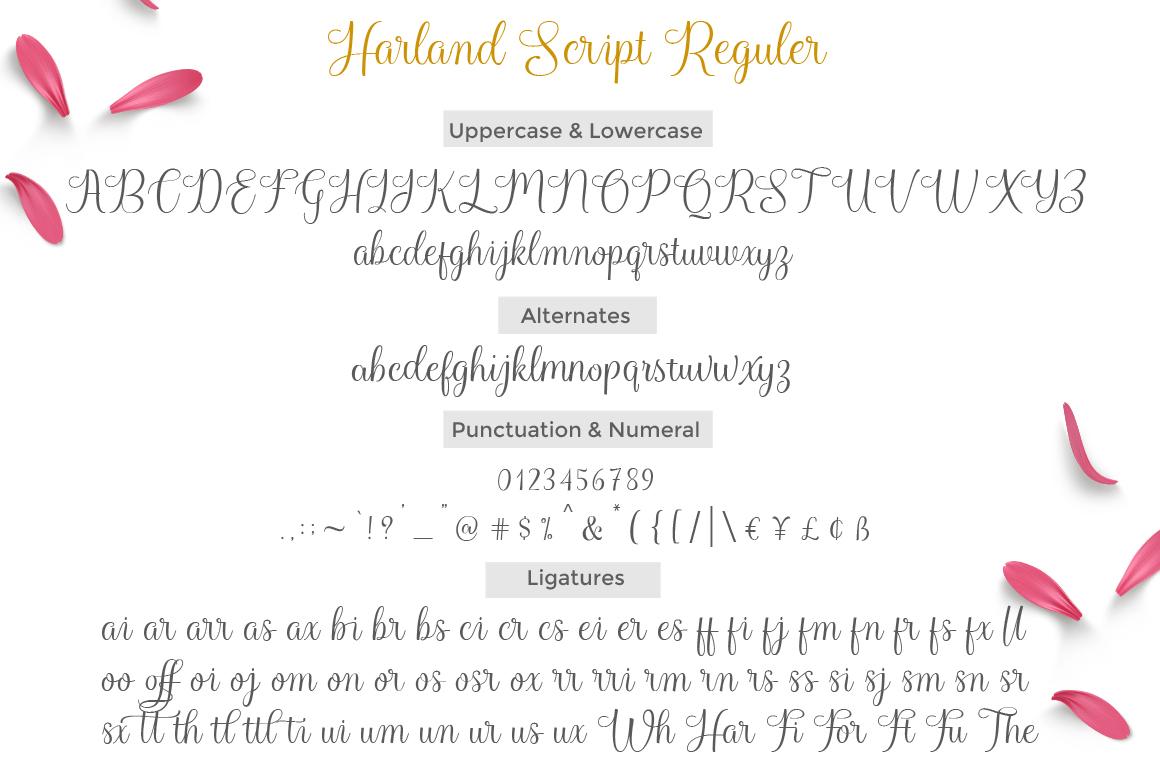Harland Script example image 8