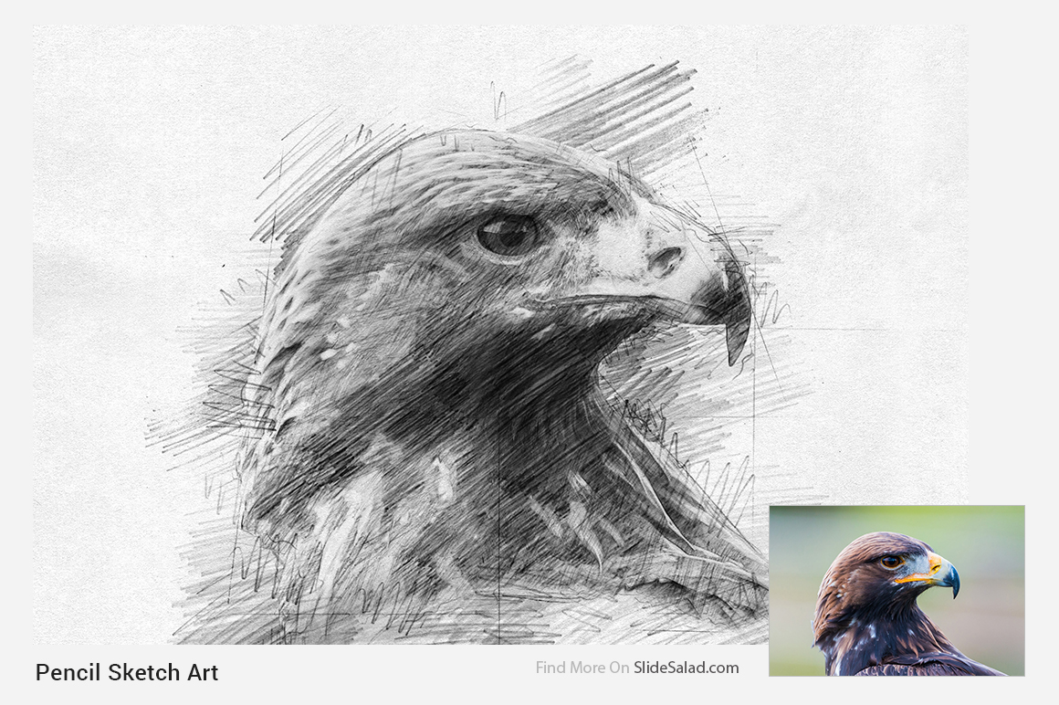 e0e74f6c090 Pencil Sketch Art Photoshop Action example image 6