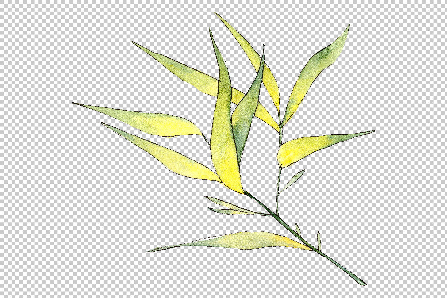 Bamboo watercolor product png example image 2