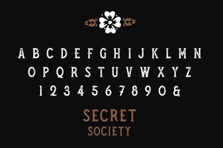 SECRET SOCIETY - A Vintage Serif example image 4