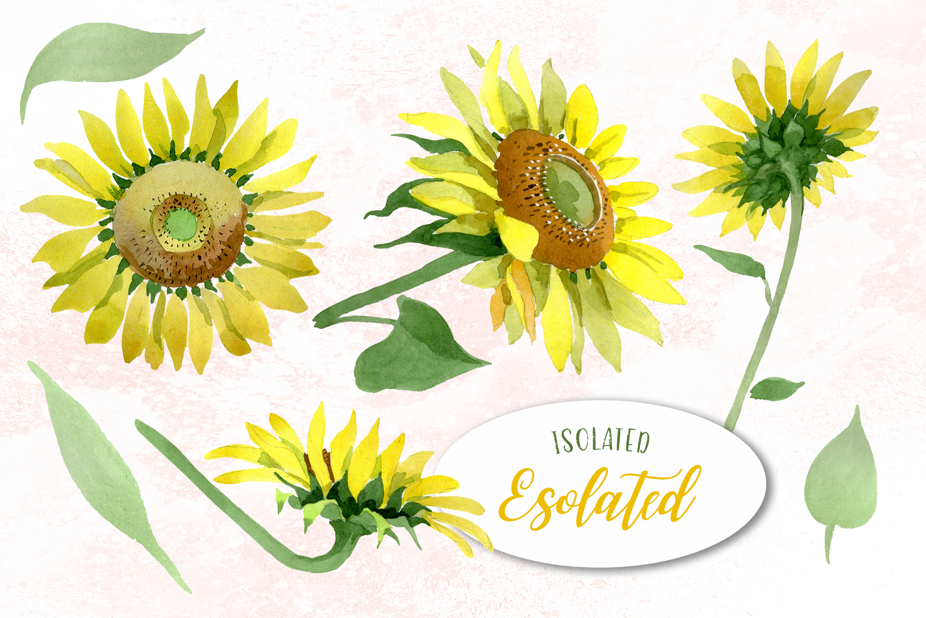 Sunflower Yellow Watercolor png example image 8