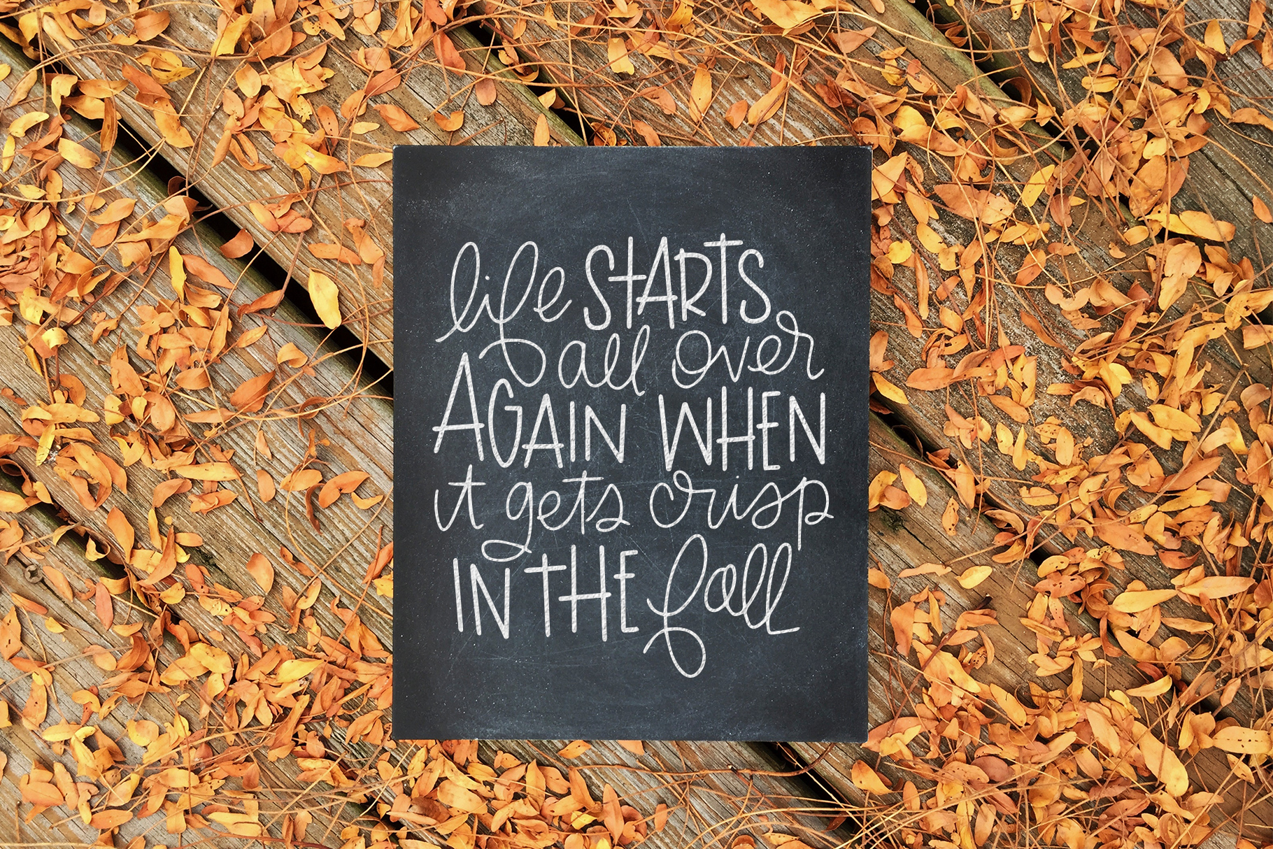 Fall Phrases Symbols Font example image 12