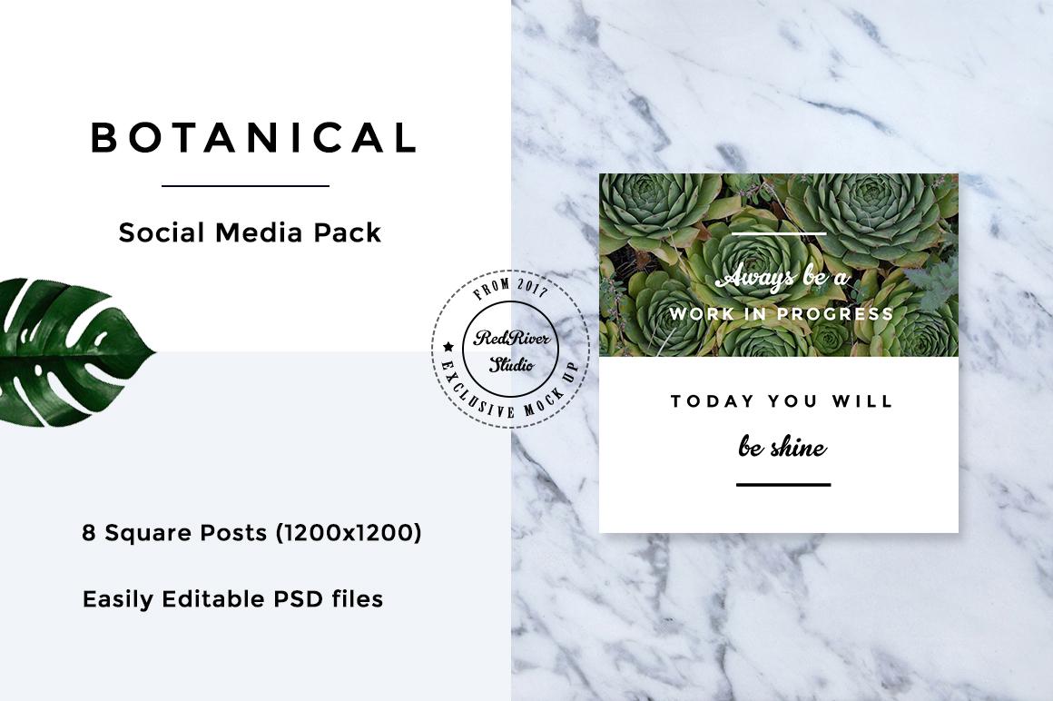 Botanical Social Media Pack example image 5