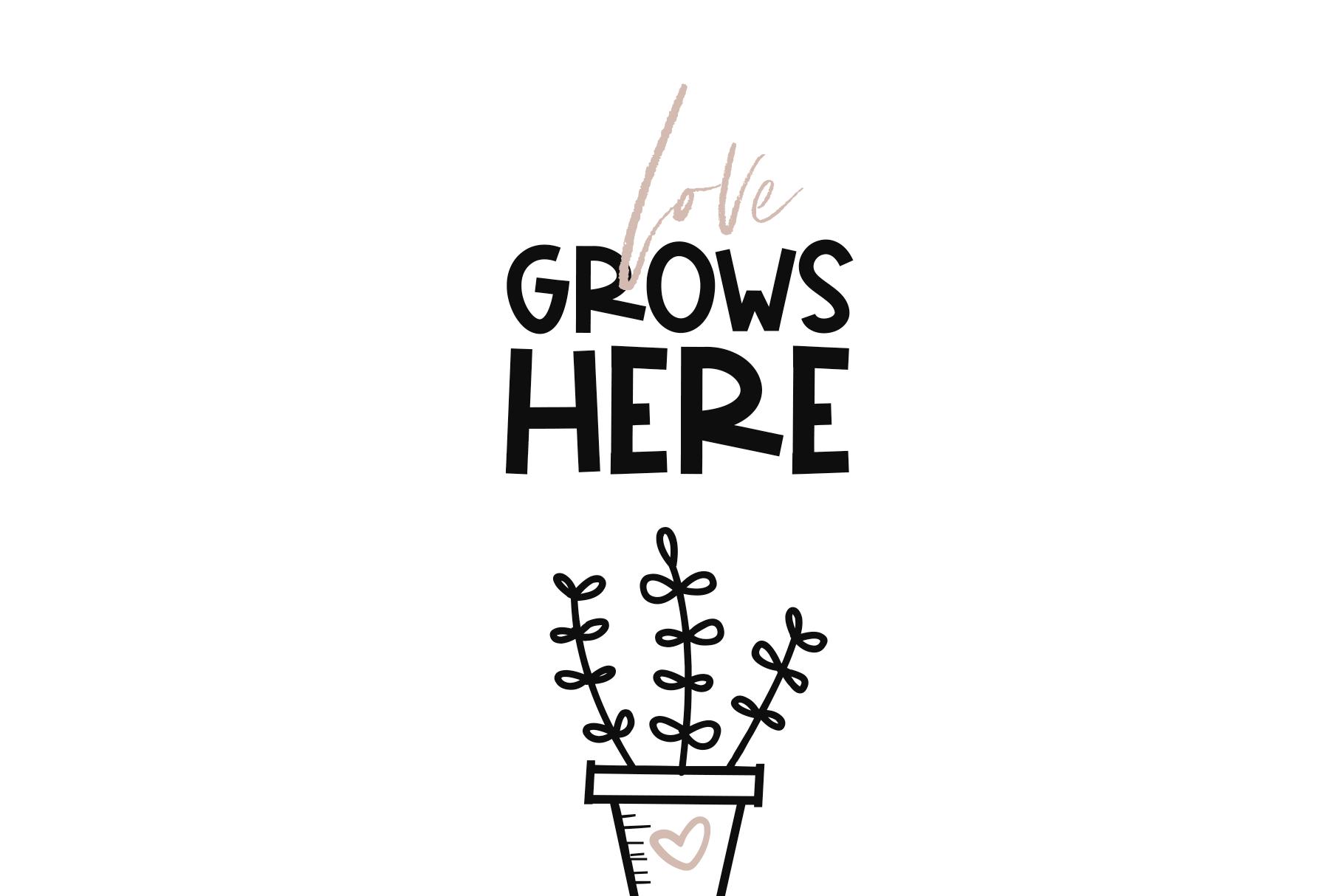 Fancactus - A Cactus & Succulent Doodle Font example image 11