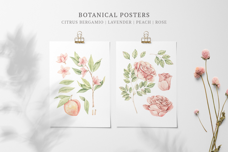 Organic LAB. Watercolor botanical illustrations example image 3