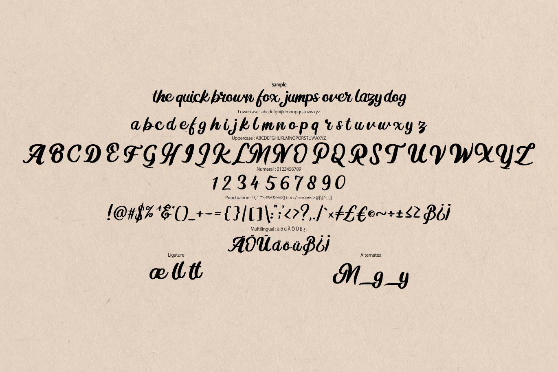 Mugle | Modern Calligraphy Script Font example image 6