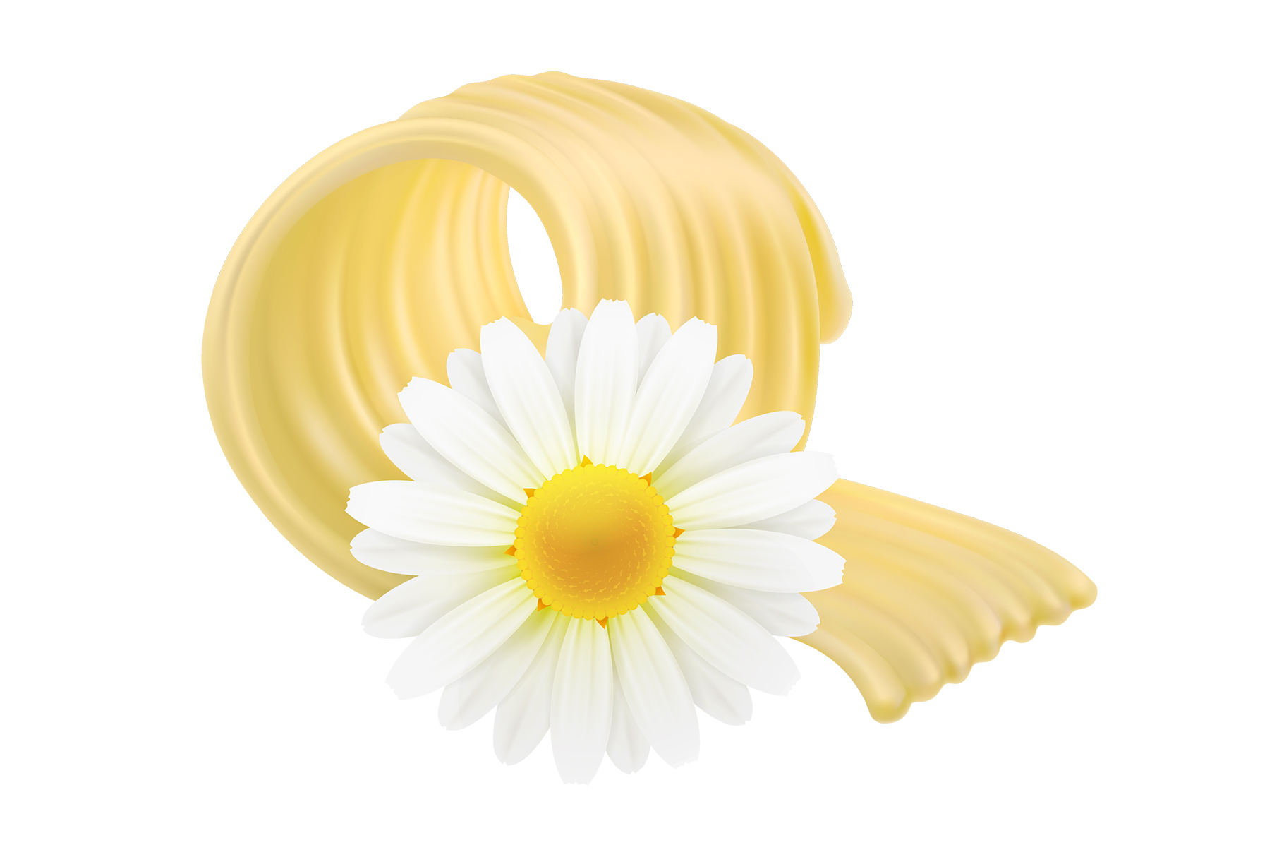 Butter. Milk farm. Whipped cream. Bio dairy products. Vector example image 4