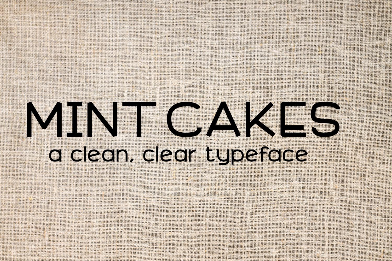 Font Bundle 5 Exclusive Fonts!  example image 9