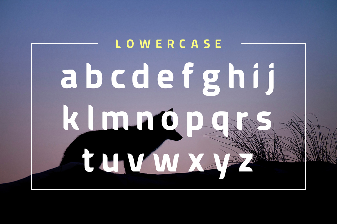American Fox Font example image 4