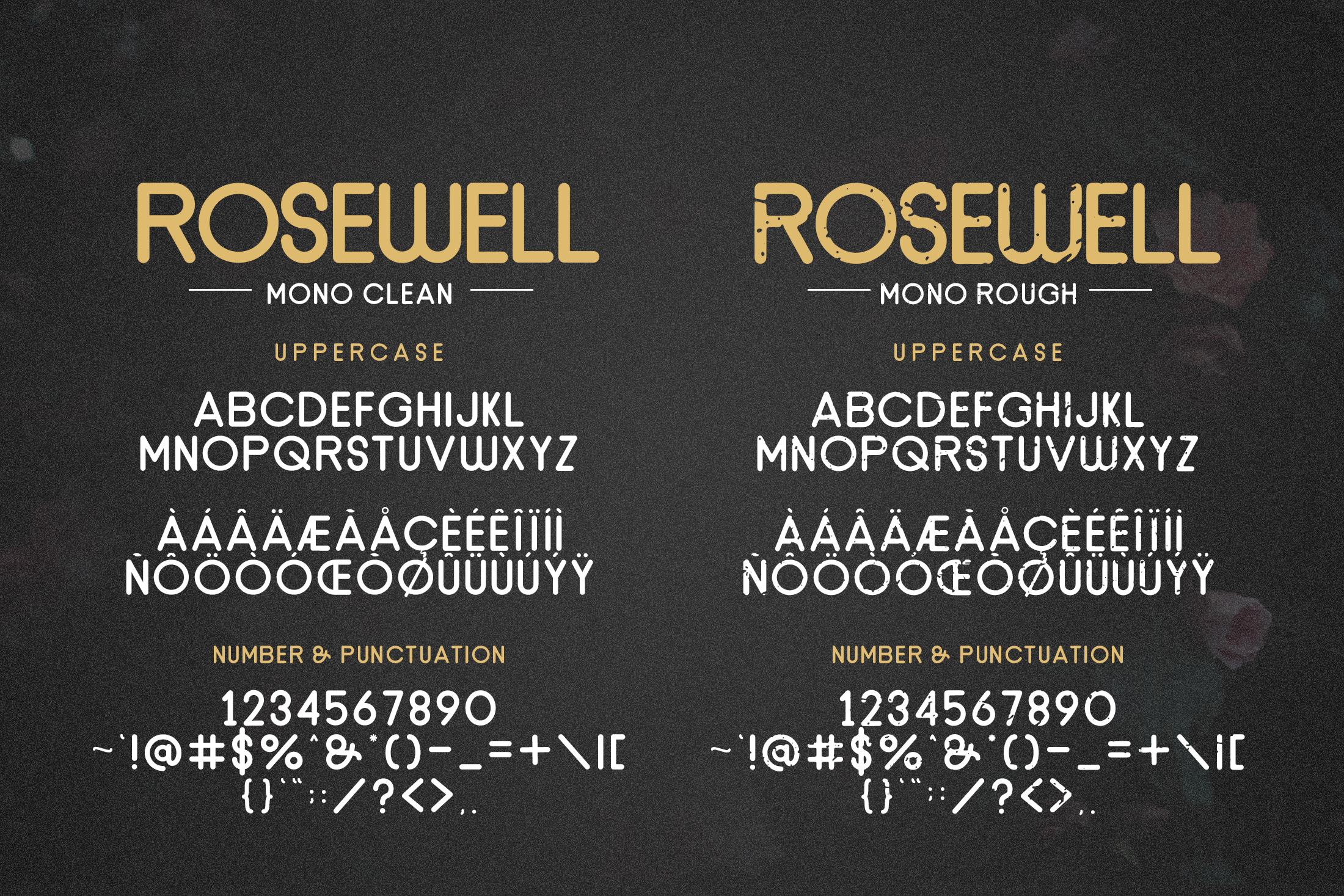Rosewell Font Collection example image 10