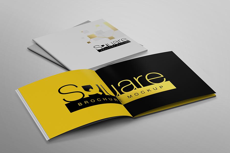 Square Brochure Mockup example image 5