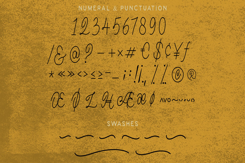 Magna - Monoline Script Font example image 13
