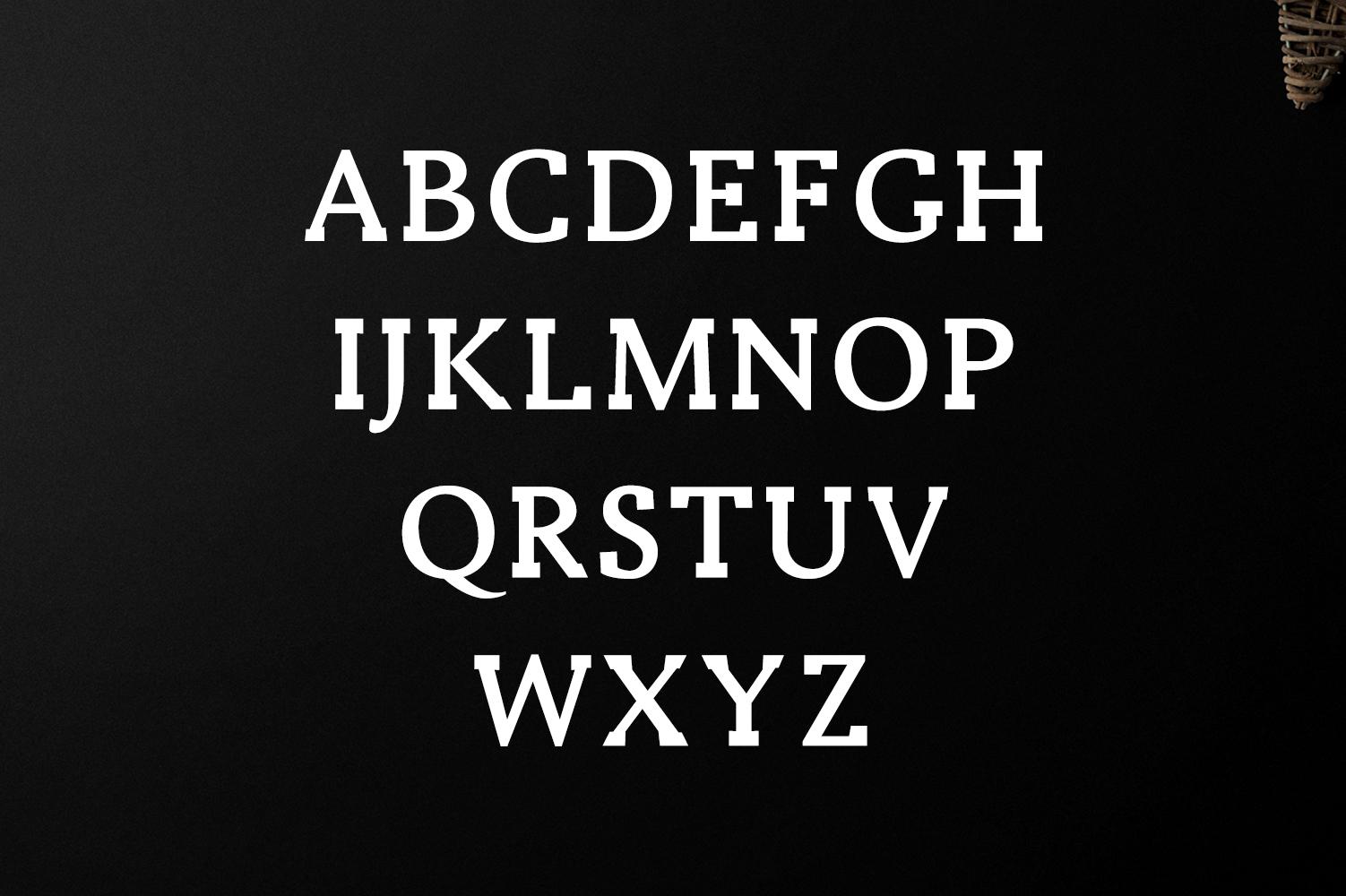 Ireene Serif 3 Font Family Pack example image 6