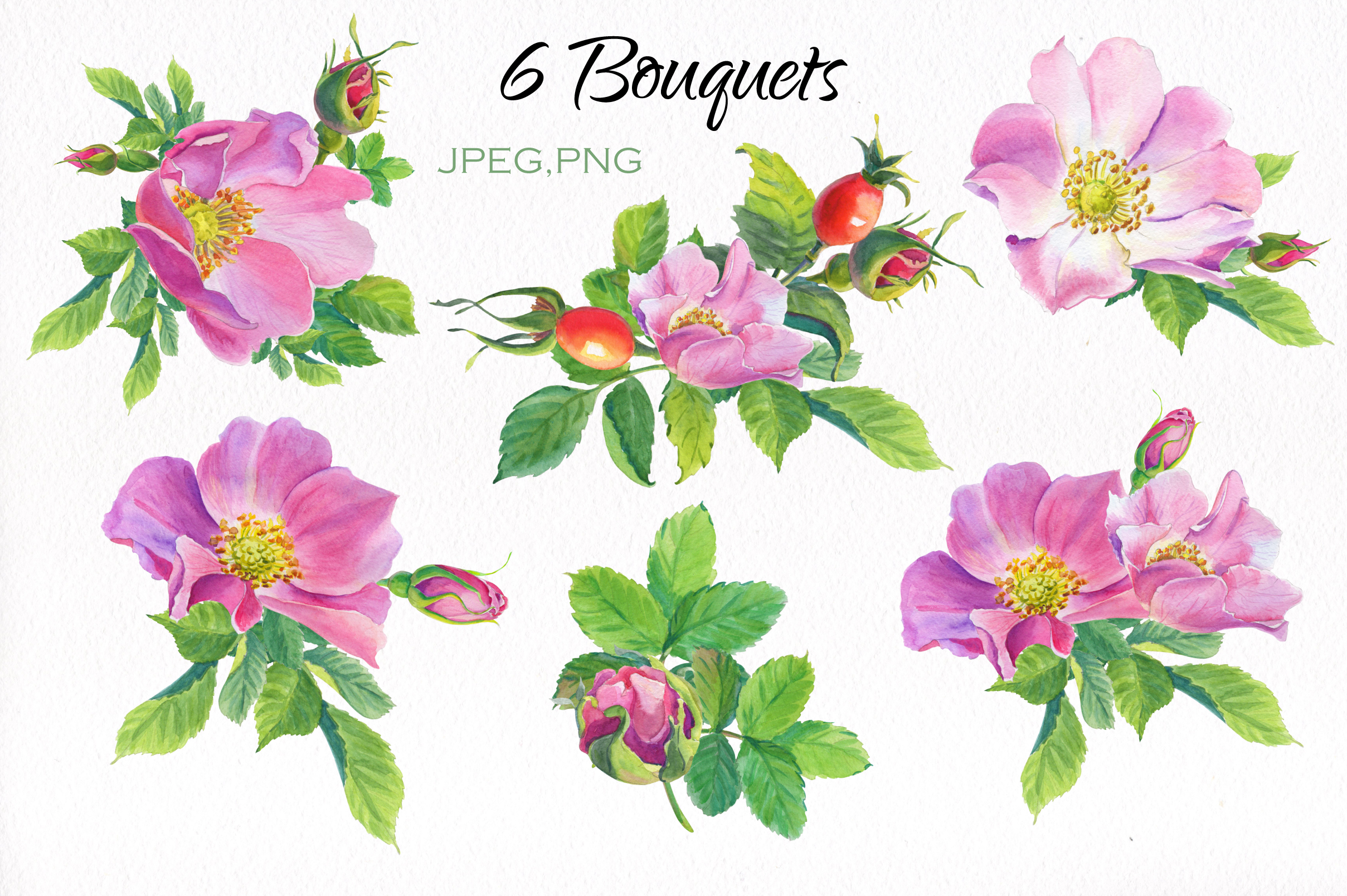 Aroma of Wild Roses. Watercolor set. example image 2