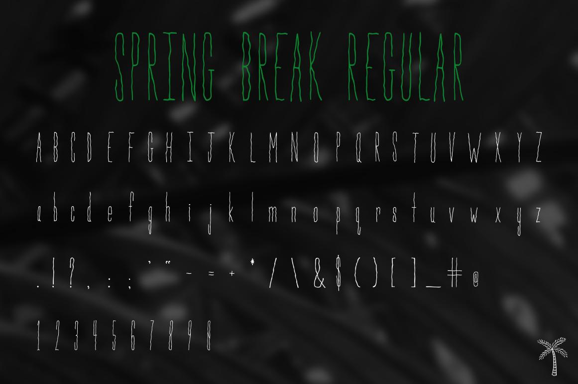 Spring Break Font & Bonus Graphics example image 4