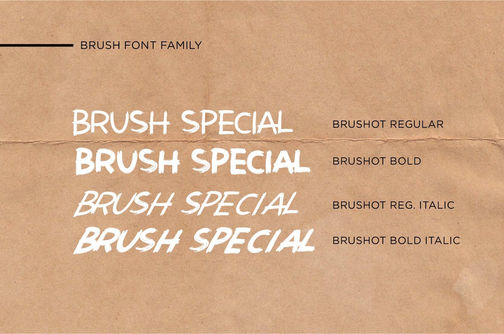 Brushot 4 Font Plus Swash example image 2