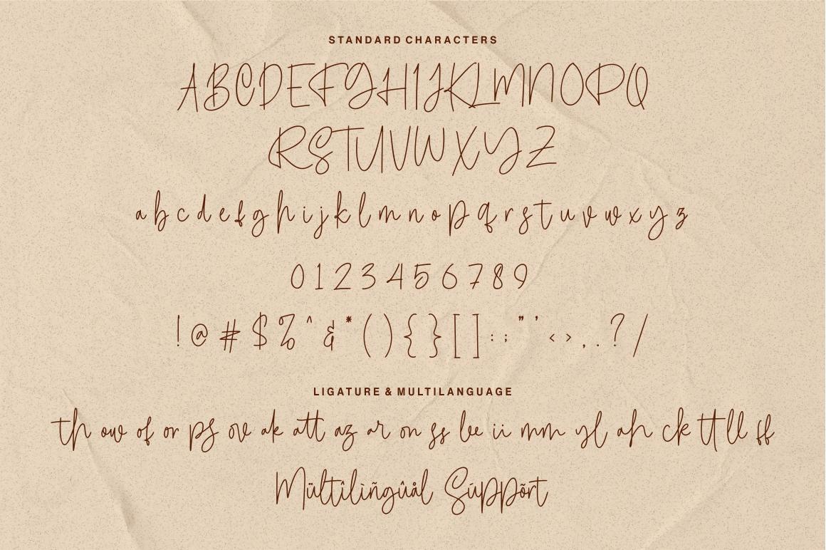 Calledliner - Monoscript Font example image 8