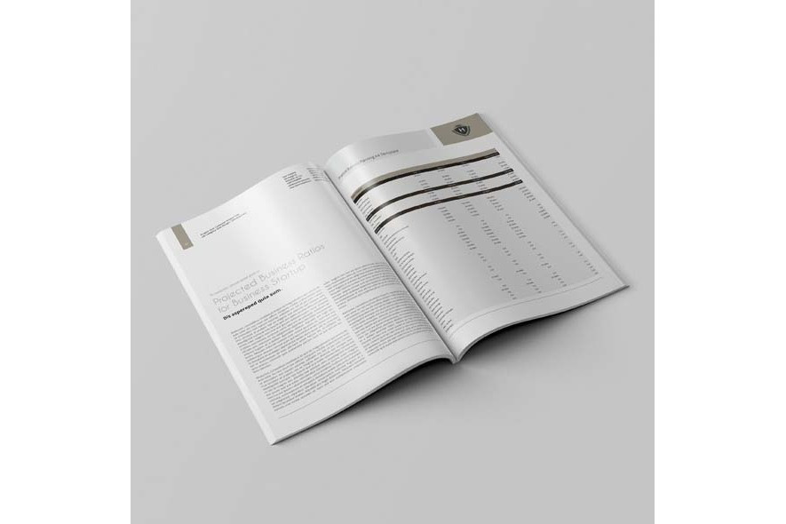 Financial Business Planning A4 Template example image 4